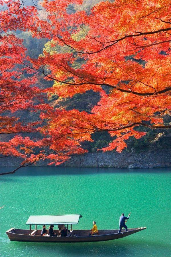 "Logan Shaw on DIITU ""Autumn Colors""."