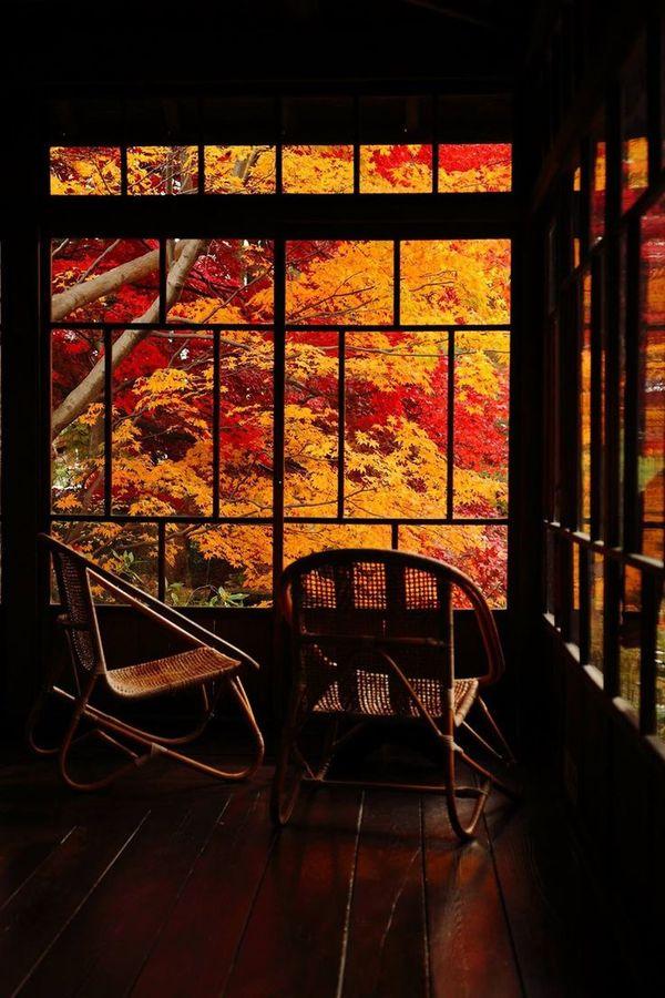 """Alston on DIITU """"Autumn Colors""""."""