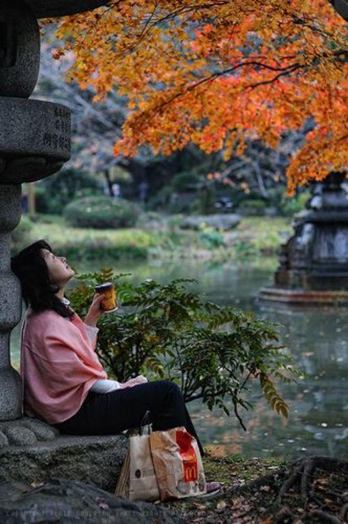 """Ann Taylor on DIITU """"Autumn Colors""""."""