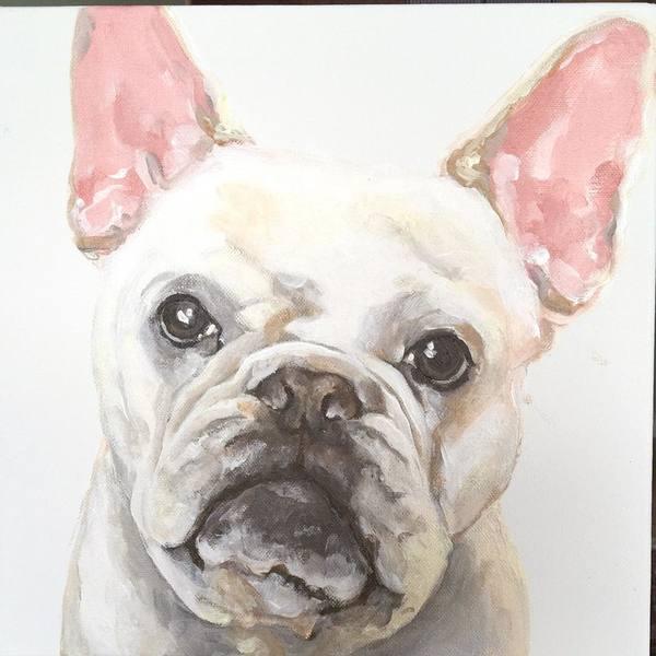 "perfectdoggy5566 on DIITU Communities ""Draw your pet🐶🐱🐰🐸🐭自己的寵物自己畫"". From https://communities.diitu.com/post/frenchie-145872459394370"