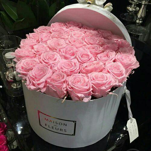 "penlover on DIITU Communities ""pink world"". From https://communities.diitu.com/post/99+roses-146416391636903"
