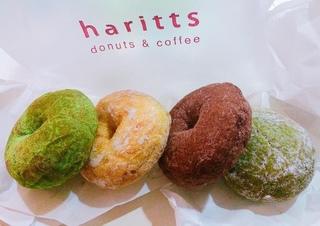 Harrits Donut
