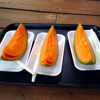 Enjoy sweet Yubari melon
