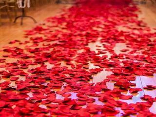 仿真玫瑰花瓣 (每包約100片)