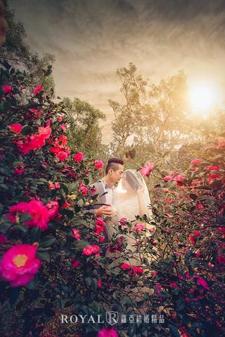 我的婚紗照裡,有陽光、花香,和愛情