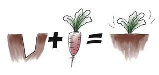 一個蘿蔔一個坑-談自體齒移植